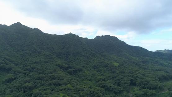 Tahaa, aerial view of the mountain Ohiri between the bays, 4K UHD
