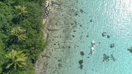 Bora Bora, aerial view above a couple of paddle boarders along the island, 4K UHD