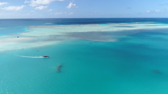 Fakarava, aerial view of a motor boat navigating in the green lagoon, 4K UHD