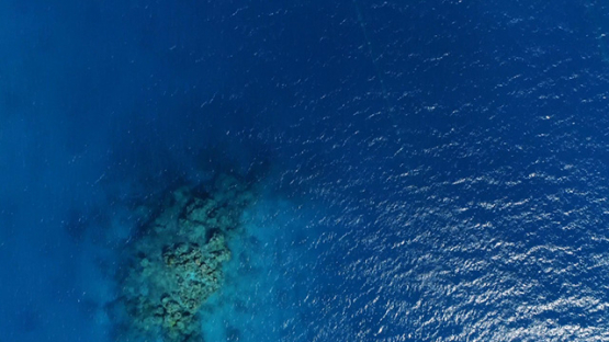 Fakarava, aerial view of the pearl oysters lines in the lagoon, 4K UHD