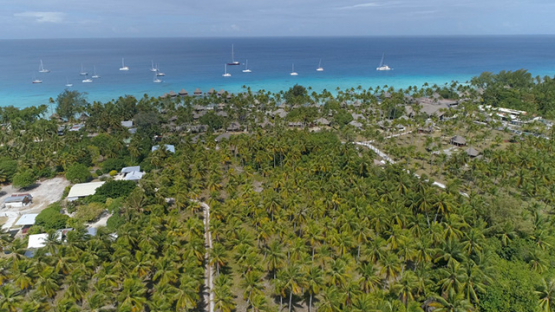 Rangiroa, aerial view of a luxury hotel in the coconut grove, 4K UHD