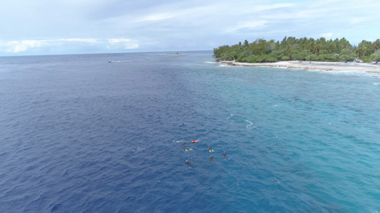 Rangiroa, aerial view of snorkelers in the Tiputa pass, 4K UHD
