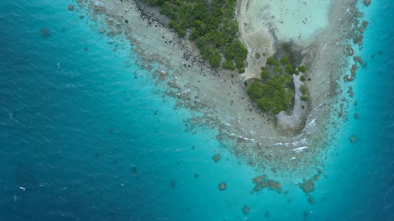 Tikehau, aerial view above the marine birds island, 4K UHD