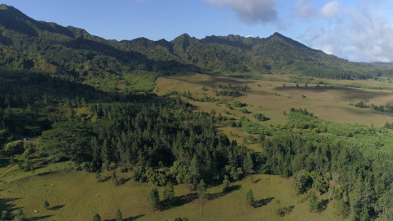 Nuku Hiva, aerial view of the forest and plain of Toovii, 4K UHD