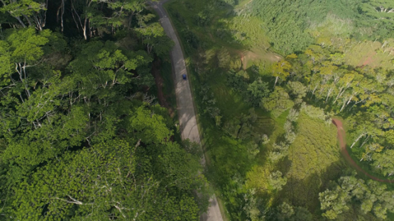 Nuku Hiva, aerial view above a car on the road and forest, 4K UHD