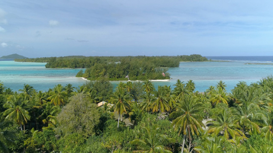 Bora Bora, aerial view above coconut tree grove and islets of the lagoon, 4K UHD