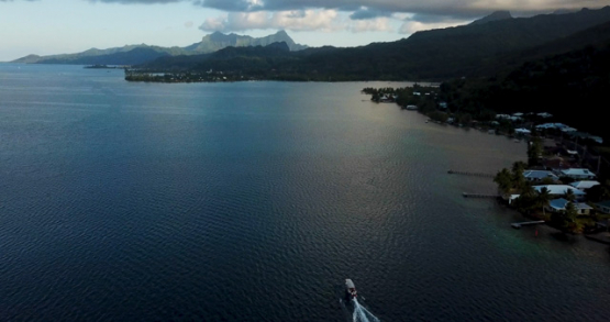 Raiatea 4k drone, aerial view of a boat following the coast at sunset