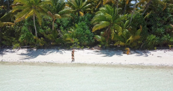 Tetiaroa 4K drone, aerial view of a couple walking on the beach along palmtrees