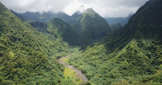 Tahiti 4K drone, aerial view of a cloudy green valley of Papenoo