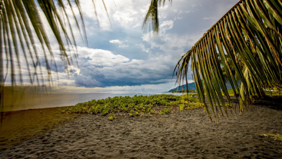 Tahiti, timelapse of cloudy Papara Beach Taharuu with palm trees in foreground, 4K UHD
