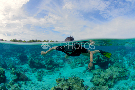 diving in the lagoon of bora bora