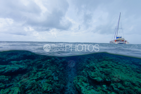 Sailboat anchored over the coral reef of Tetiaroa