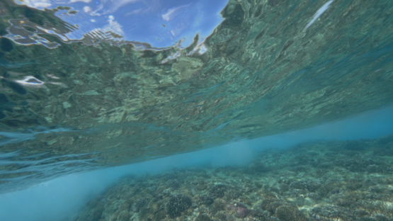 Tahiti, wave on the shorebrake from underwater, 4K UHD