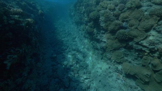 Tahiti, insiide a brake in the reef from underwater, 4K UHD