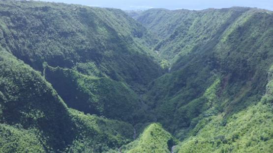 Tahiti, Hitiaa valley, aerial view by drone of the river Fara Ura, 2K7