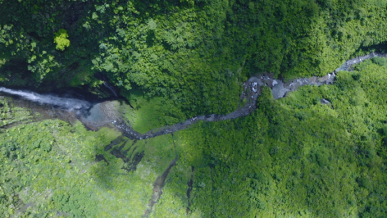 Tahiti, Hitiaa valley, aerial view by drone above the waterfall Fara Ura, 2K7