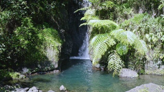 Tahiti, aerial view by drone of a waterfall of Hitiaa valley, 2K7