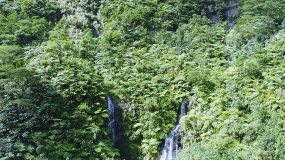 Aerial drone view of Faraura valley and waterfall in the wild vegetation, 2K7