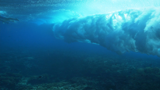 Tahiti, Wave shot from underwater near the coral reef and surfer