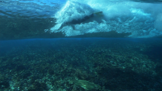 Tahiti, Body surfer in the Wave shot from underwater near reef