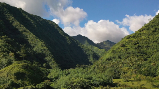 Peninsula of Tahiti, aerial view by drone of Teahupoo valley and mountains