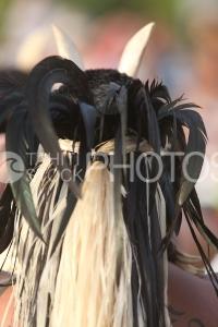 Headdress of marquesian dancer, Coiffe d'un danseur marquisien